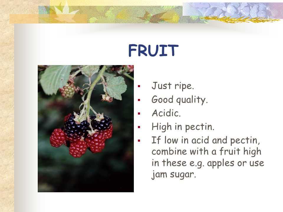 FRUIT Just ripe. Good quality. Acidic. High in pectin.