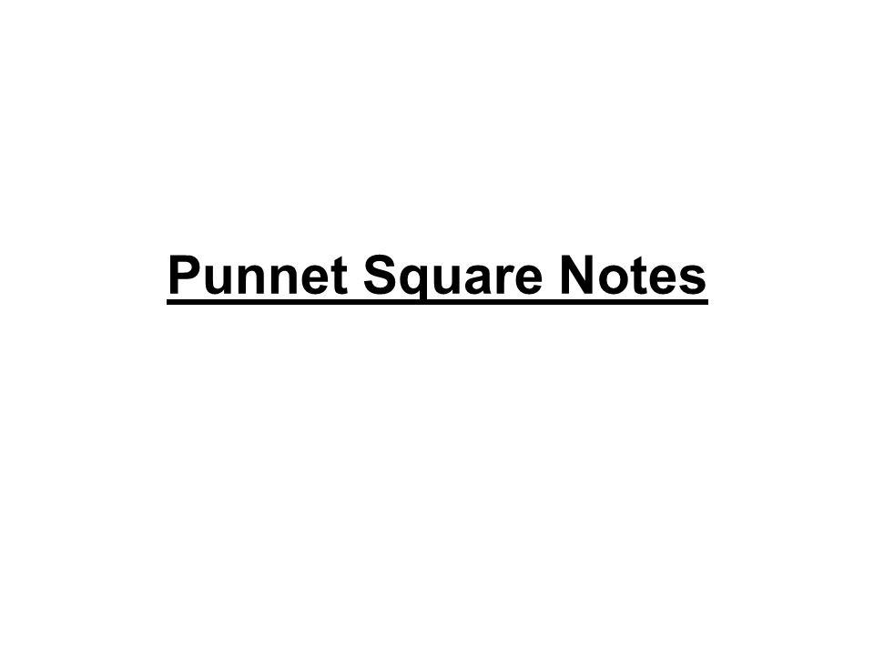 Punnet Square Notes