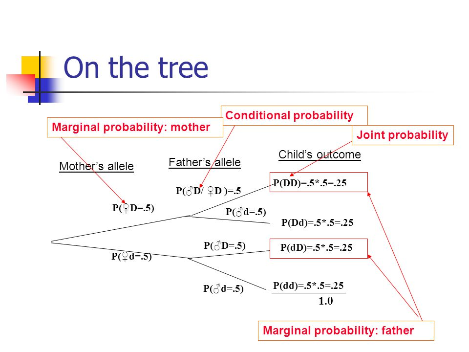 On the tree Conditional probability Marginal probability: mother