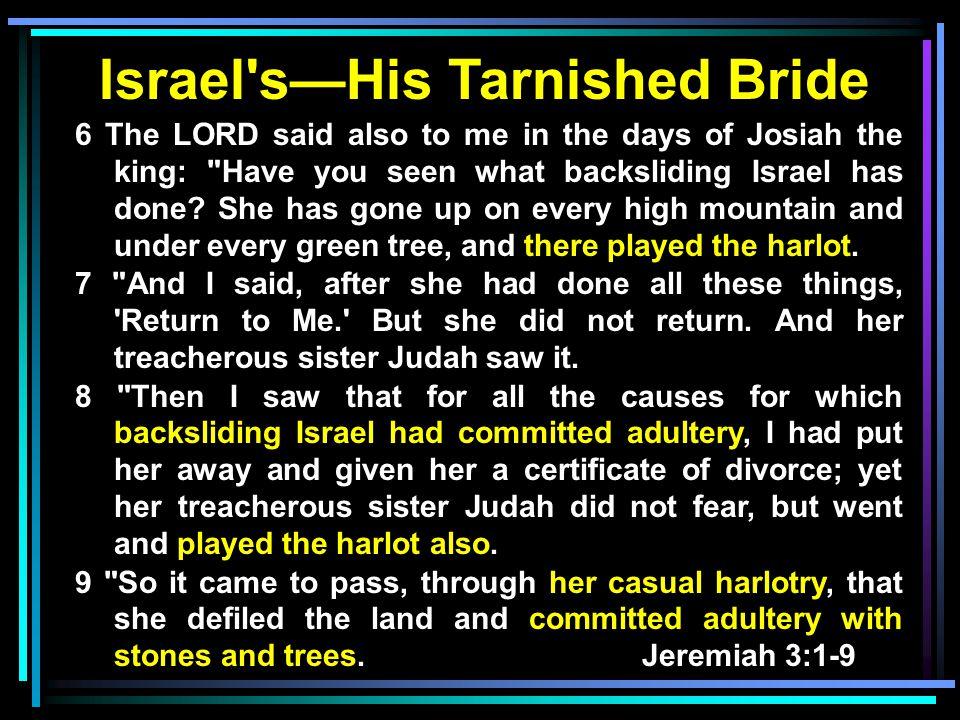 Israel s—His Tarnished Bride
