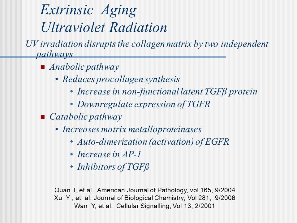 Extrinsic Aging Ultraviolet Radiation