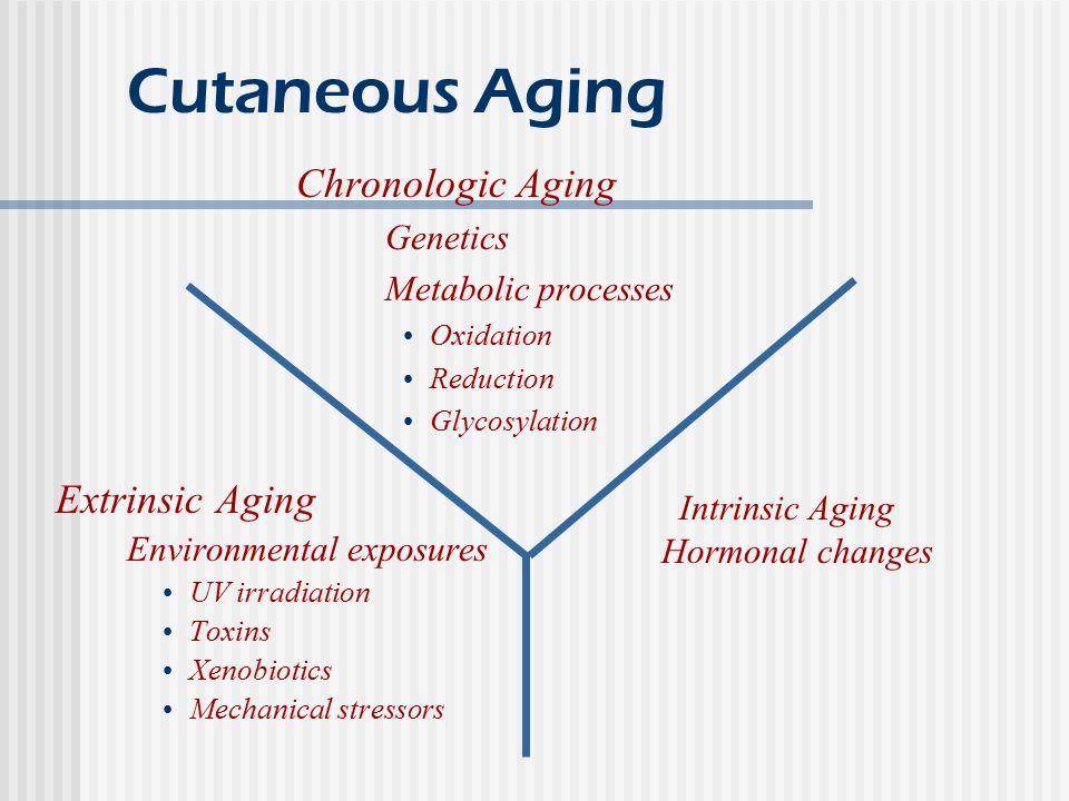 Cutaneous Aging Chronologic Aging Extrinsic Aging Genetics