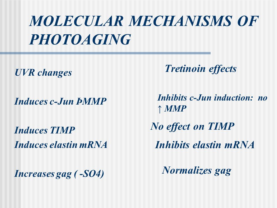 MOLECULAR MECHANISMS OF PHOTOAGING