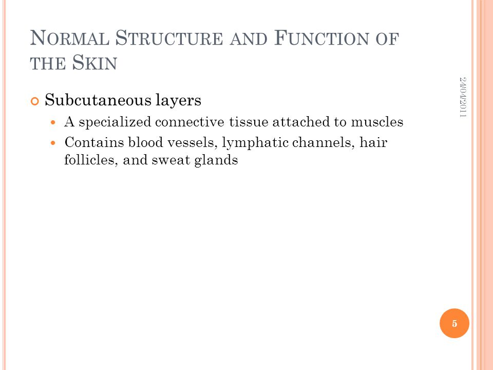 Normal Structure and Function of the Skin