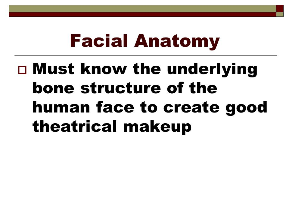 Facial Anatomy Must know the underlying bone structure of the human face to create good theatrical makeup.