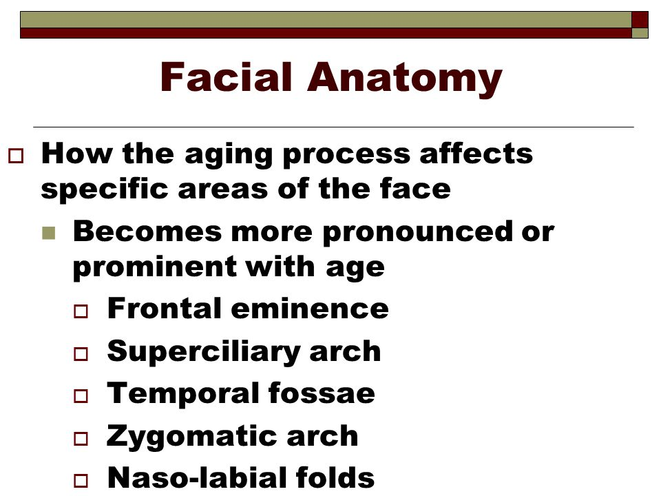 Facial Anatomy How the aging process affects specific areas of the face. Becomes more pronounced or prominent with age.