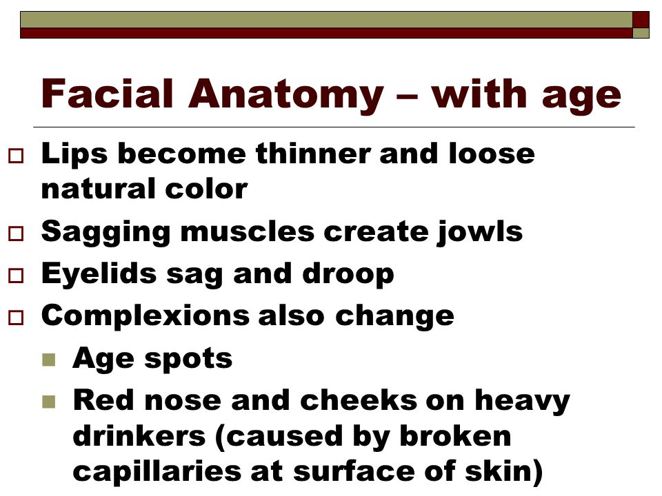 Facial Anatomy – with age