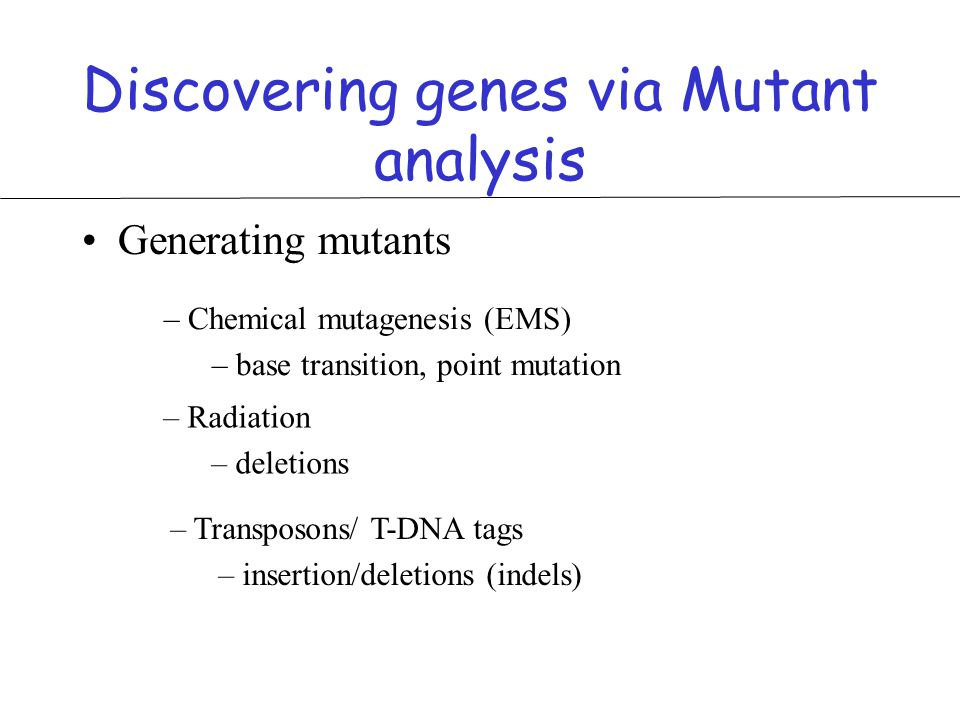 Discovering genes via Mutant analysis