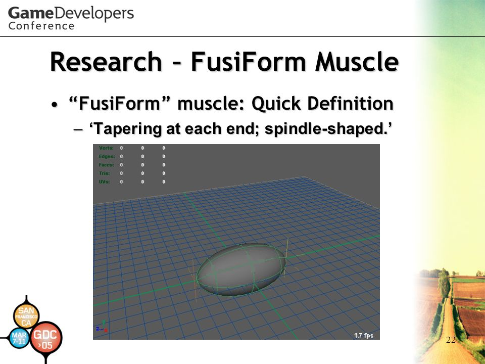 Research – FusiForm Muscle