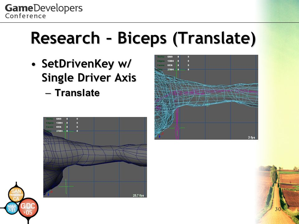 Research – Biceps (Translate)