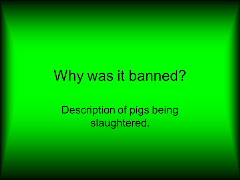 Description of pigs being slaughtered.