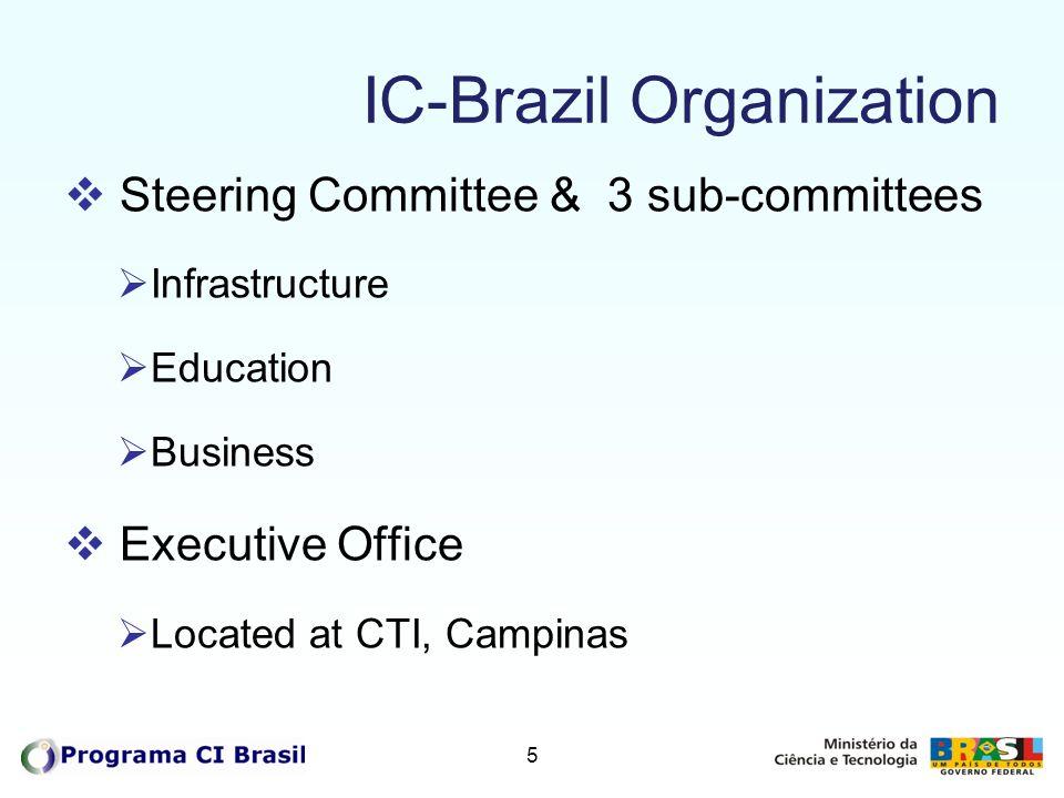 IC-Brazil Organization