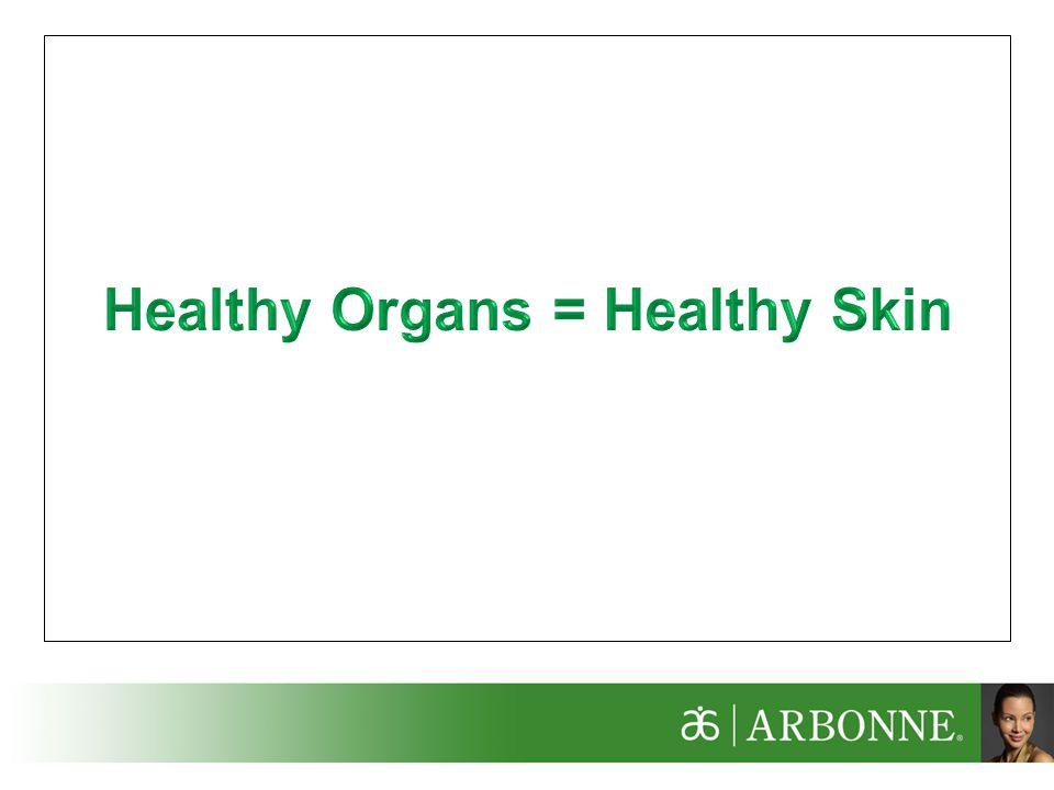 Healthy Organs = Healthy Skin