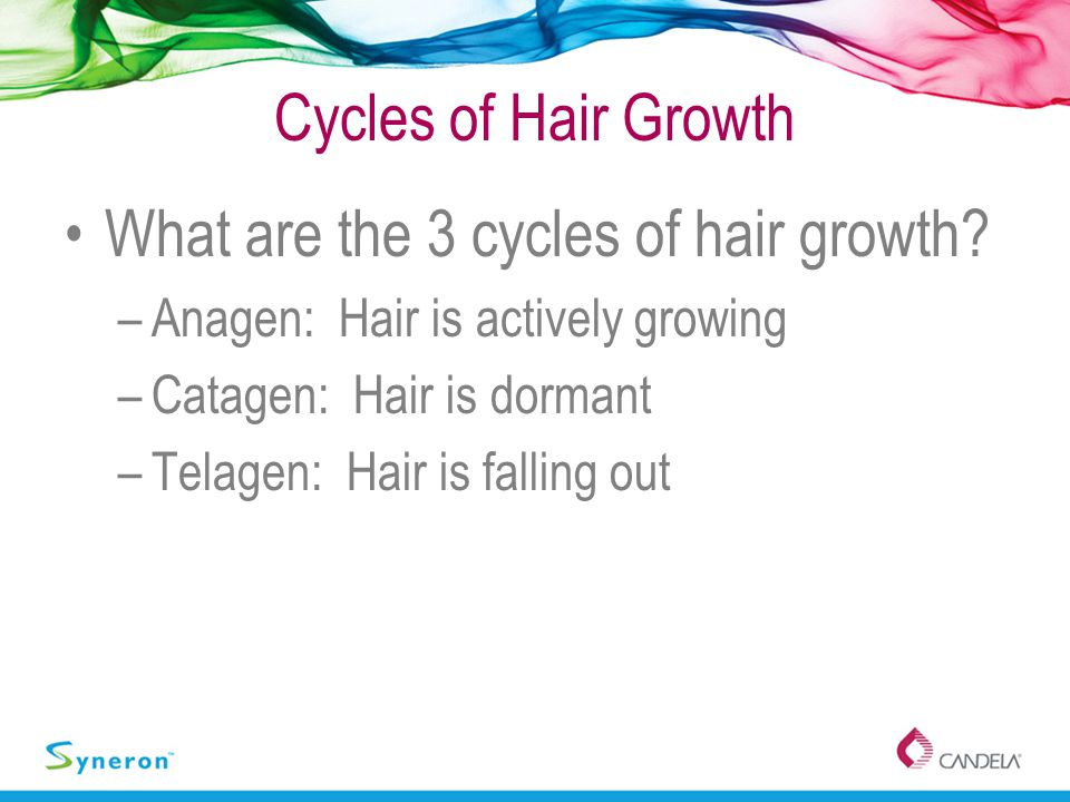 What are the 3 cycles of hair growth
