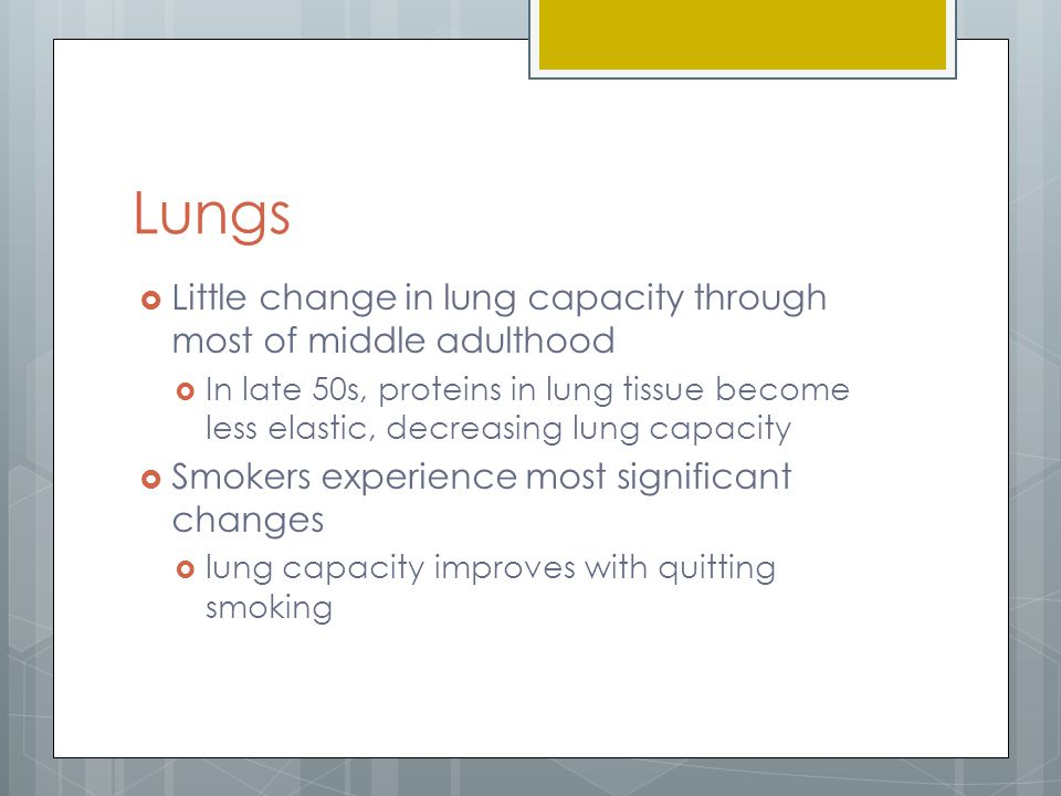 Lungs Little change in lung capacity through most of middle adulthood