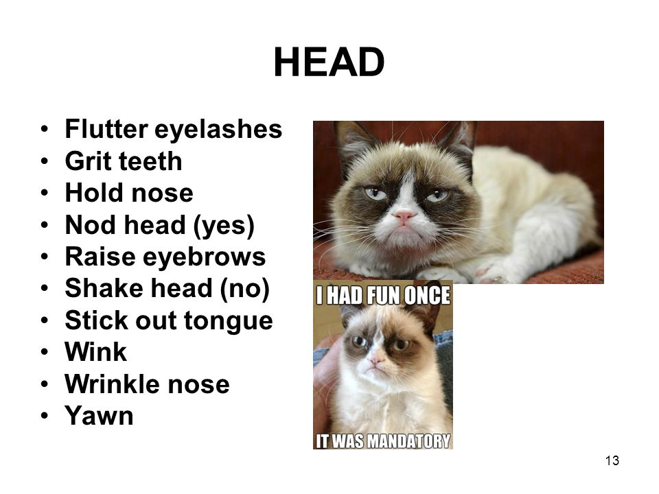 HEAD Flutter eyelashes Grit teeth Hold nose Nod head (yes)