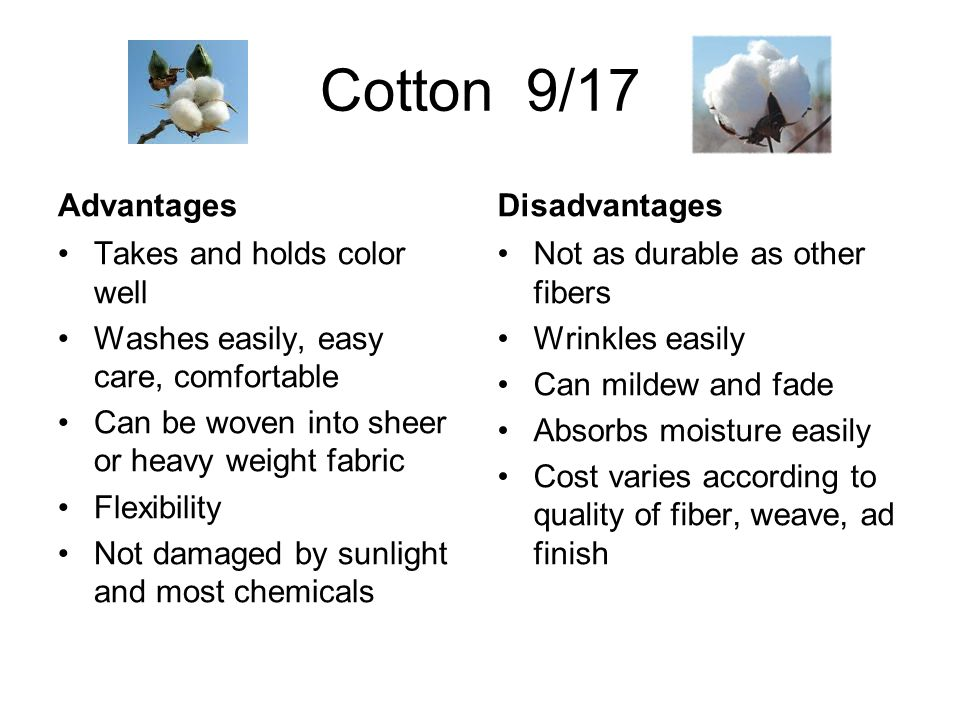 Cotton 9/17 Advantages Disadvantages Takes and holds color well