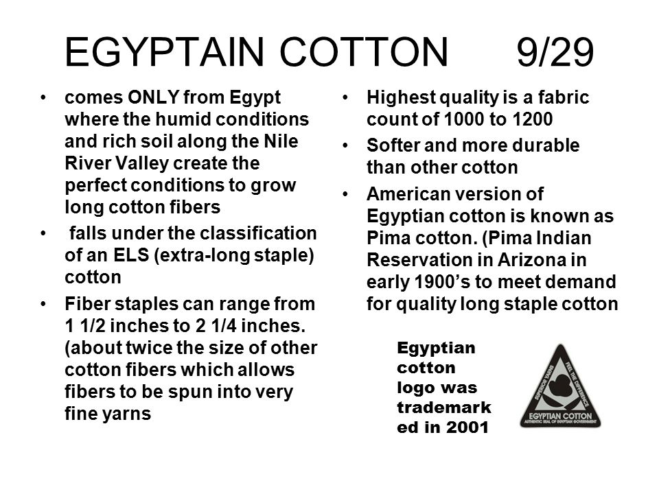 EGYPTAIN COTTON 9/29