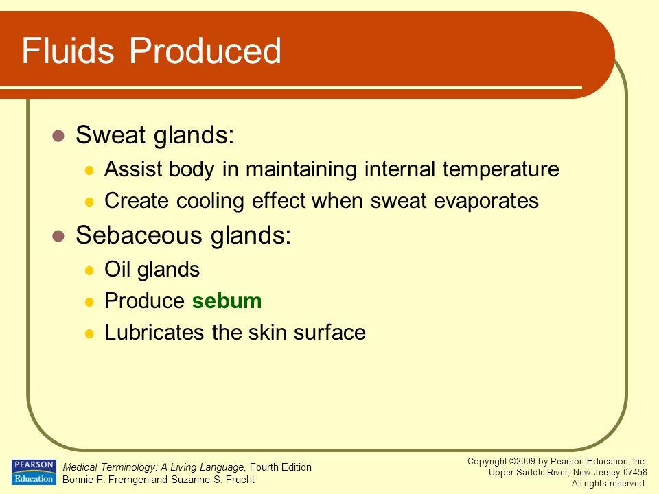 Fluids Produced Sweat glands: Sebaceous glands: