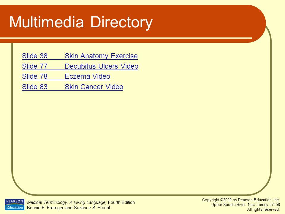 Multimedia Directory Slide 38 Skin Anatomy Exercise