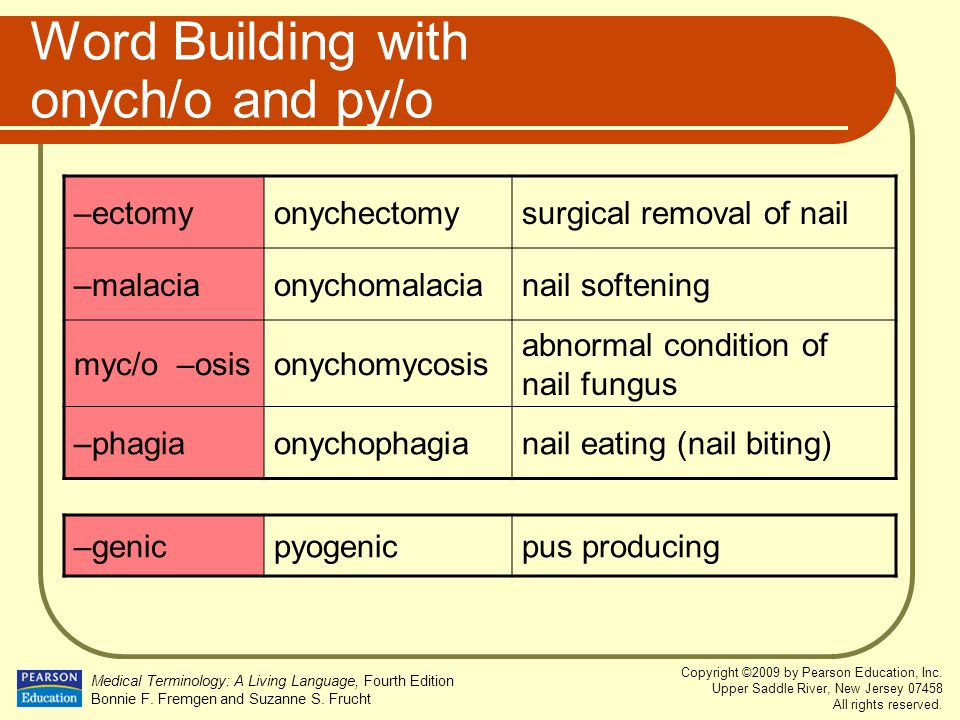Word Building with onych/o and py/o