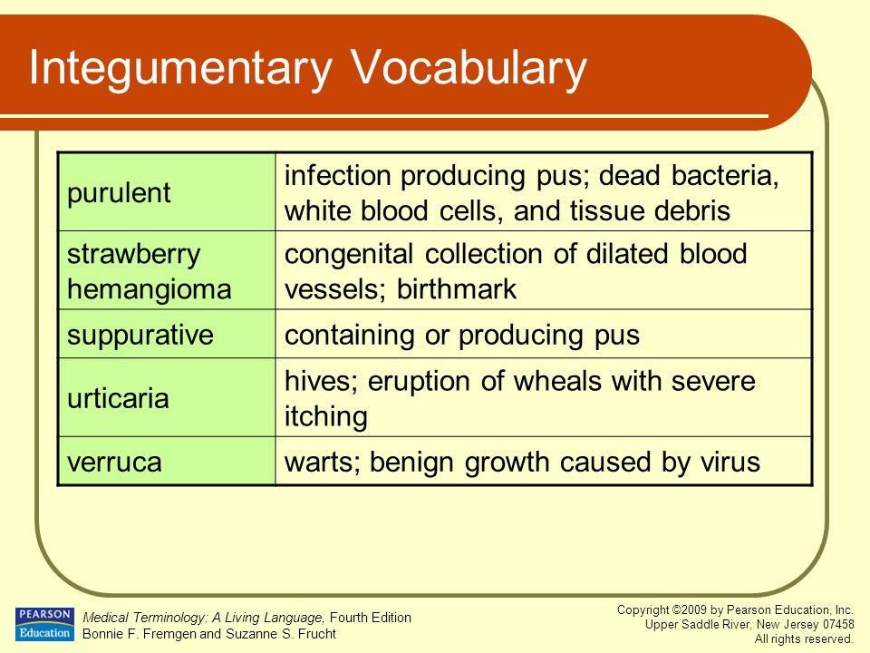 Integumentary Vocabulary