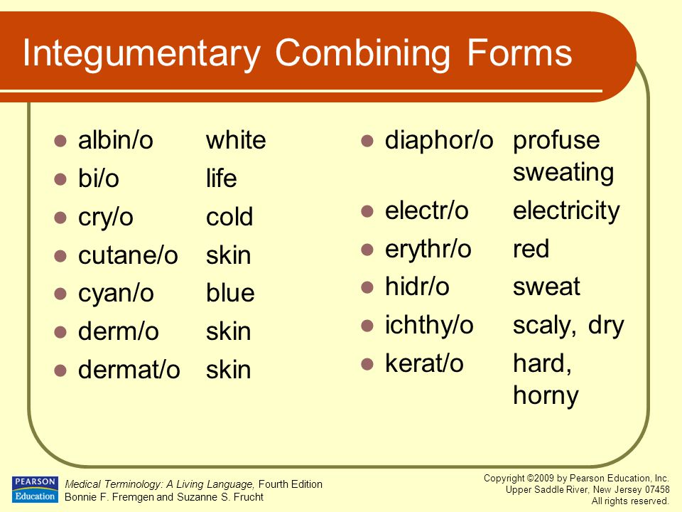 Integumentary Combining Forms