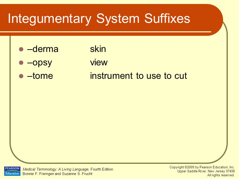 Integumentary System Suffixes