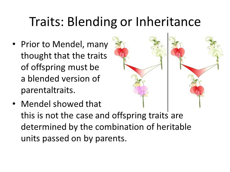Traits: Blending or Inheritance