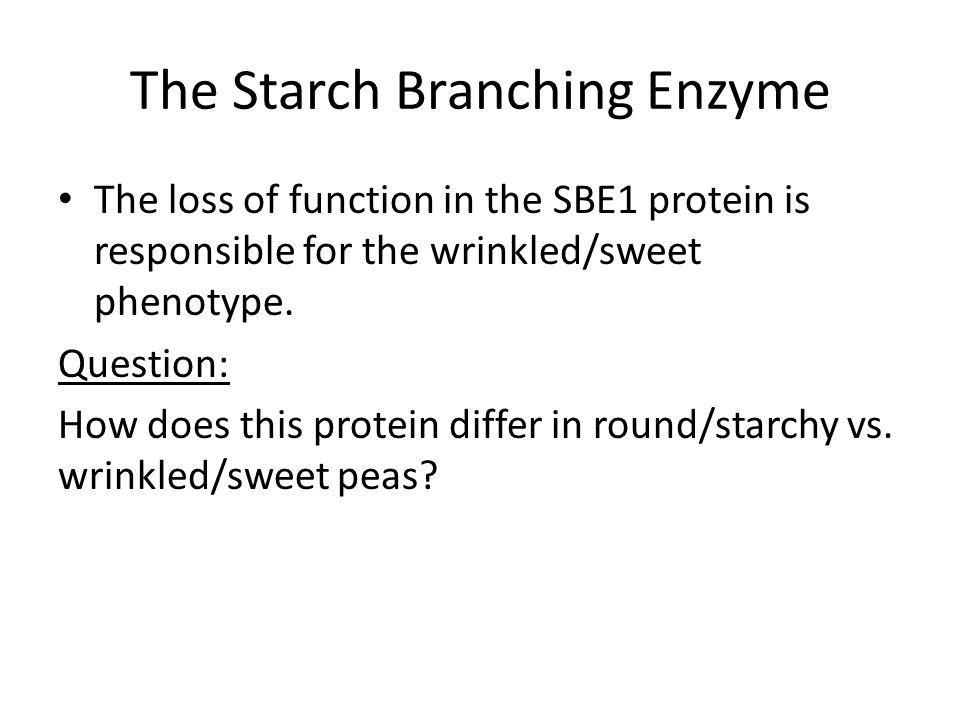 The Starch Branching Enzyme