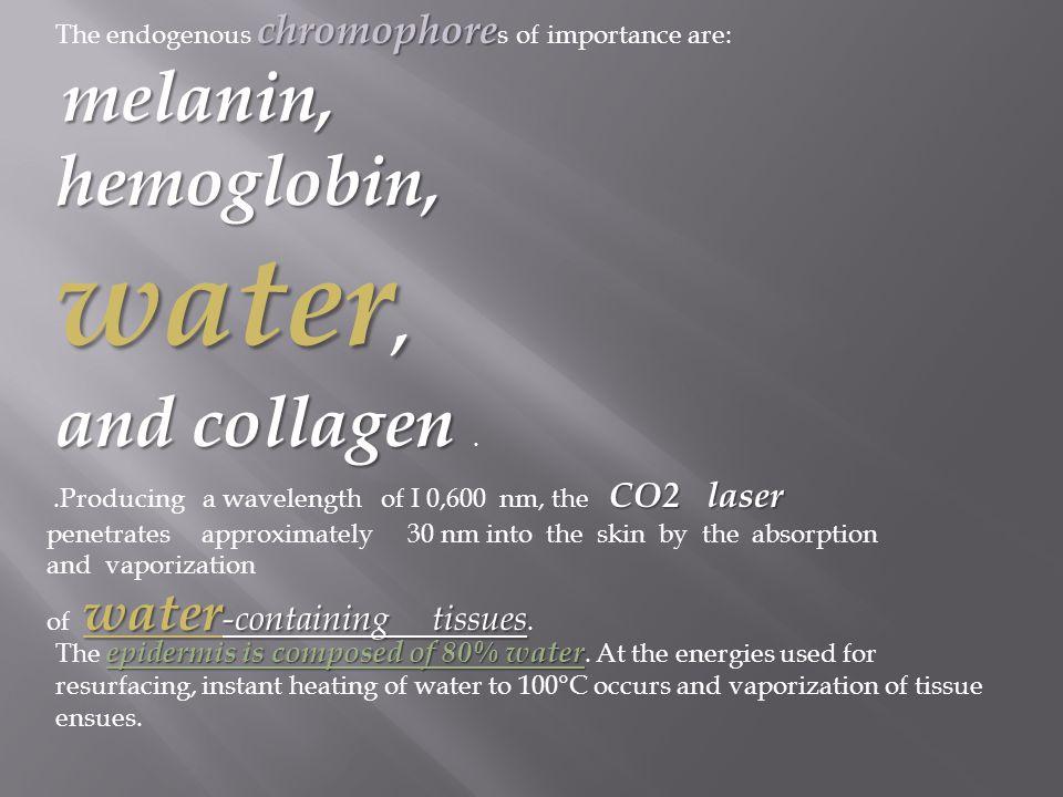 water, hemoglobin, and collagen .