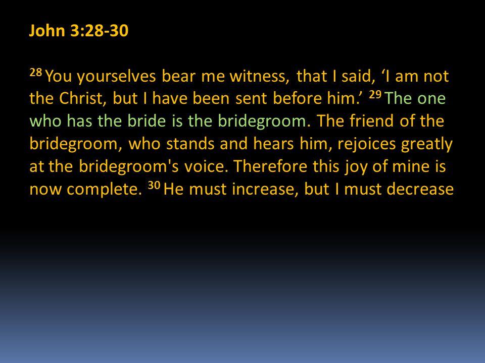 John 3:28-30