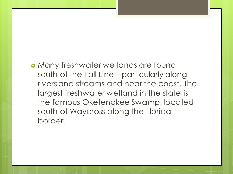 Many freshwater wetlands are found south of the Fall Line—particularly along rivers and streams and near the coast.