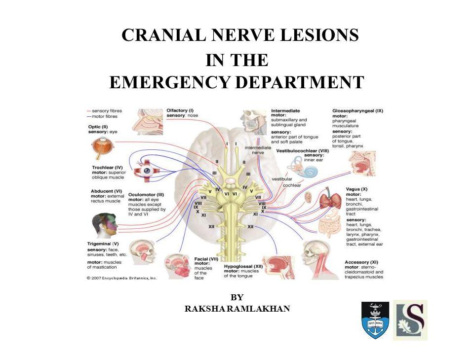 CRANIAL NERVE LESIONS IN THE EMERGENCY DEPARTMENT BY RAKSHA RAMLAKHAN