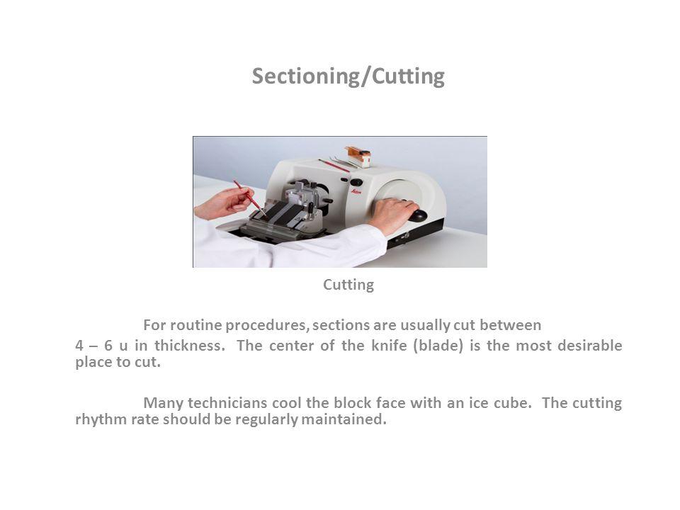 Sectioning/Cutting Cutting
