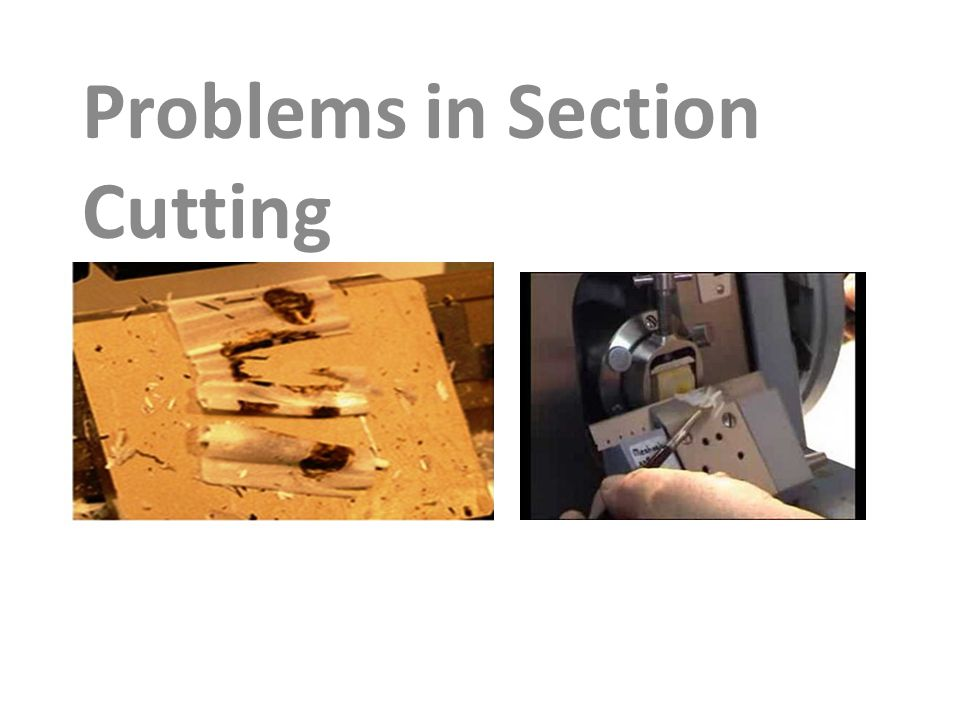 Problems in Section Cutting