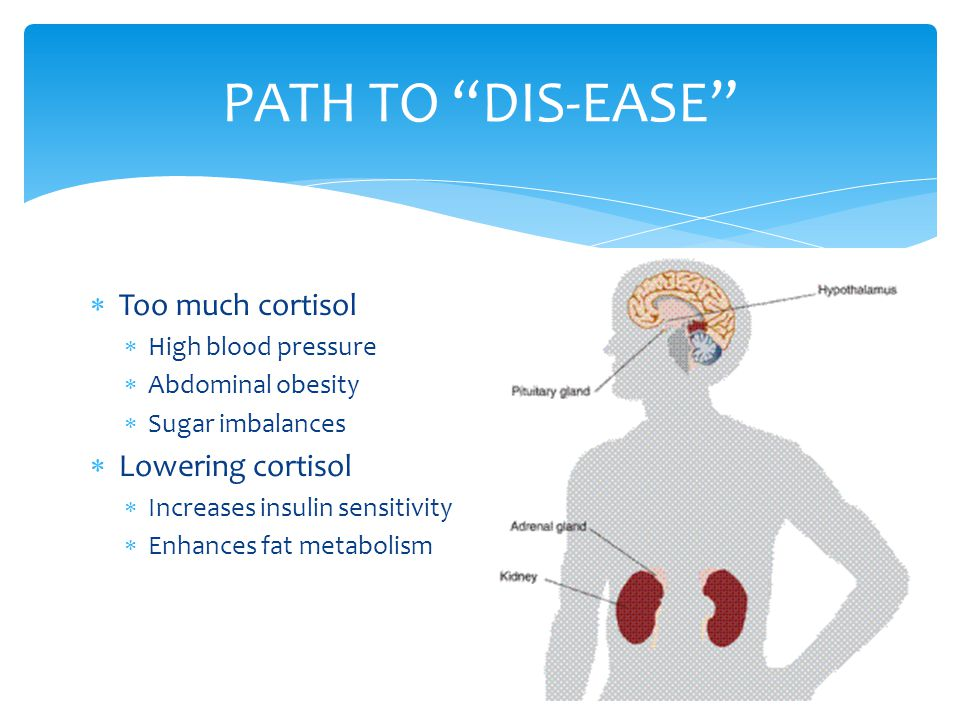 PATH TO DIS-EASE Too much cortisol Lowering cortisol