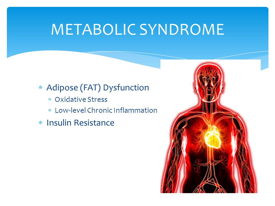 METABOLIC SYNDROME Adipose (FAT) Dysfunction Insulin Resistance