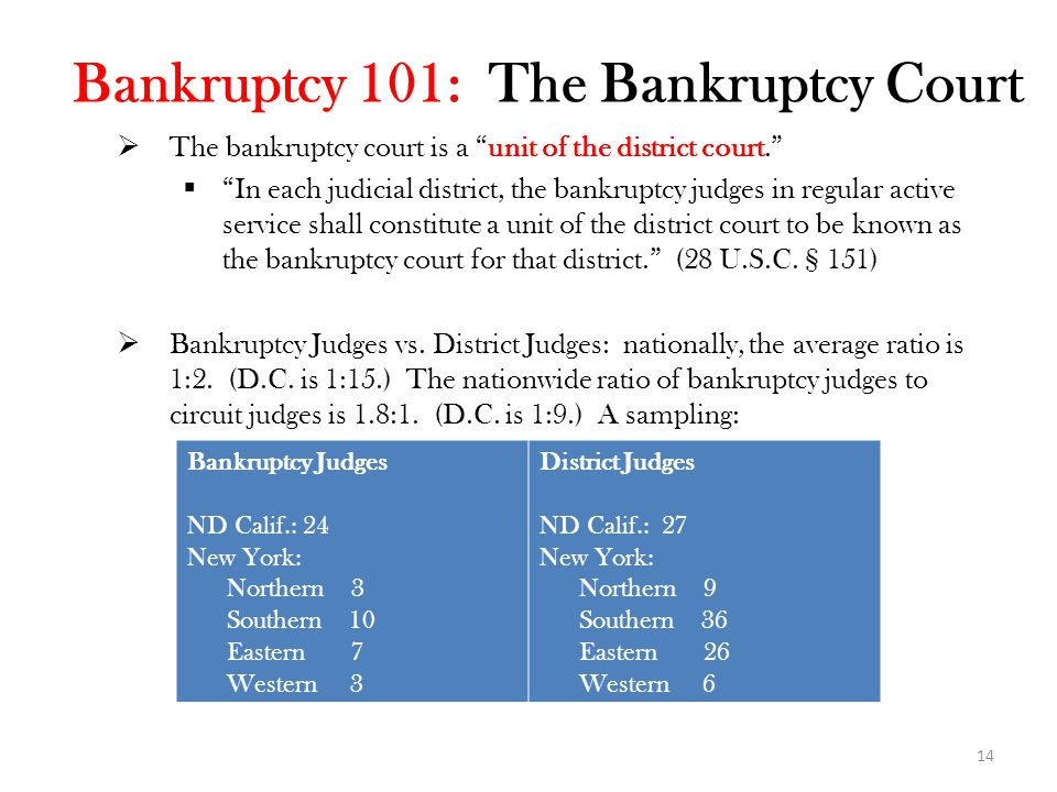 Bankruptcy 101: The Bankruptcy Court