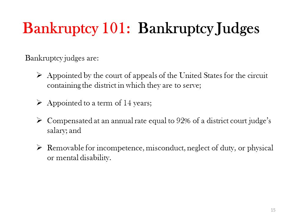 Bankruptcy 101: Bankruptcy Judges