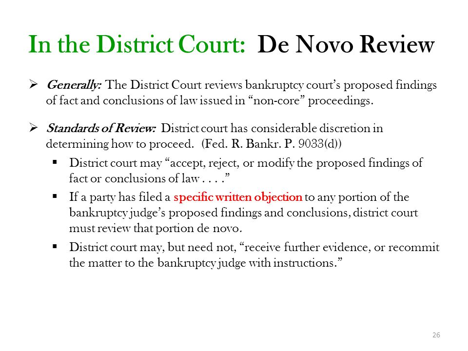 In the District Court: De Novo Review