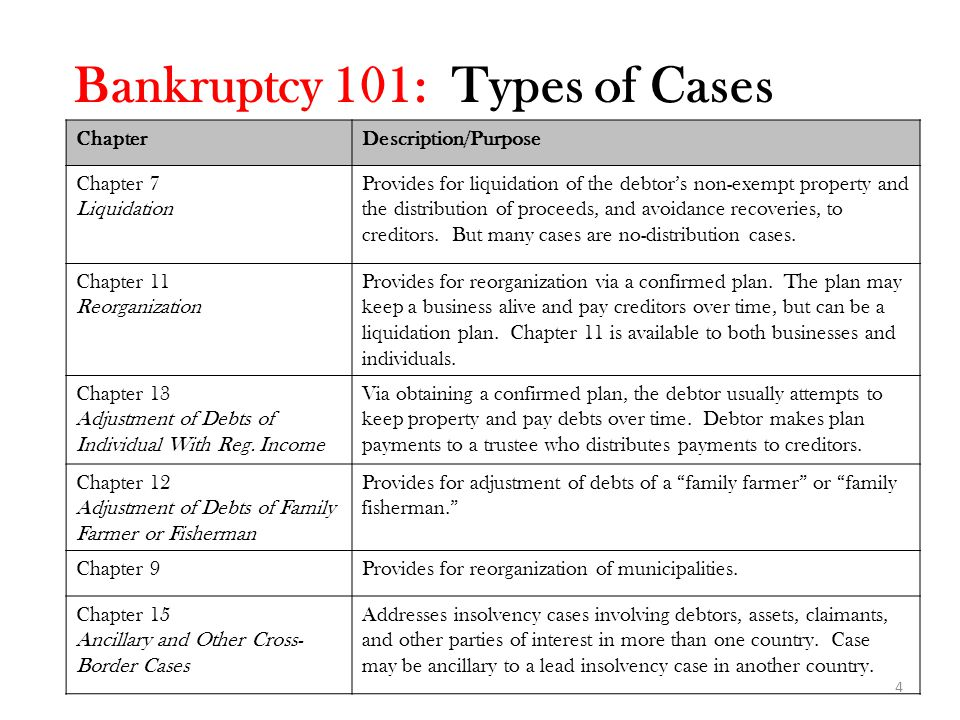 Bankruptcy 101: Types of Cases