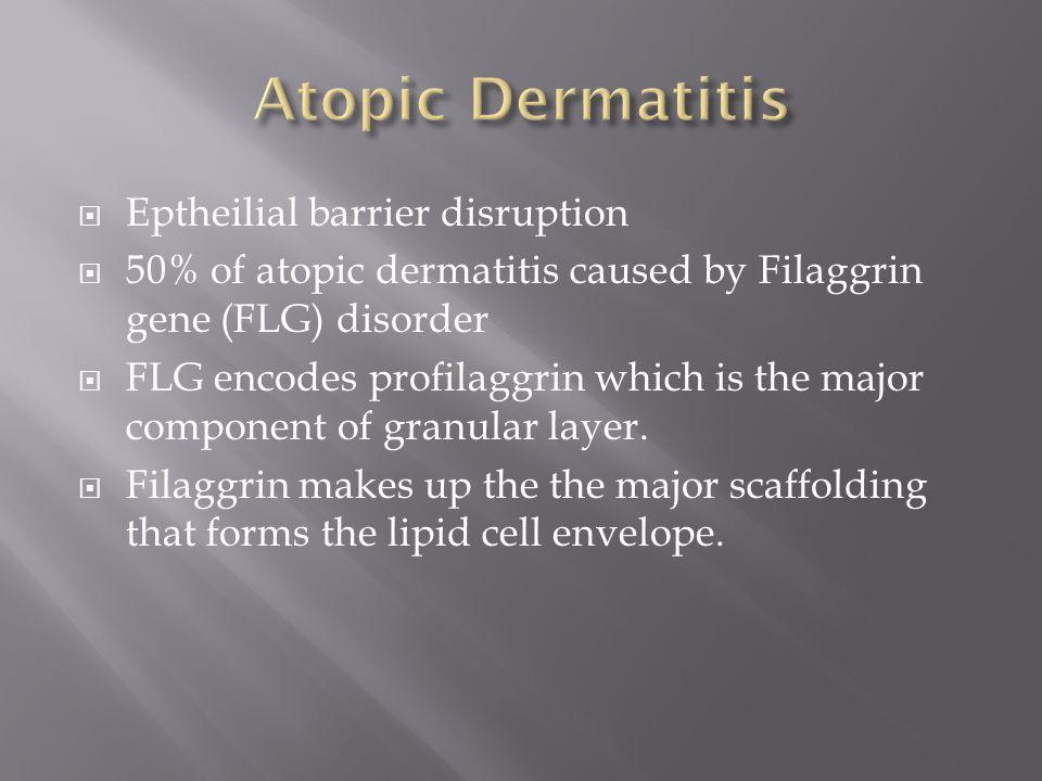Atopic Dermatitis Eptheilial barrier disruption