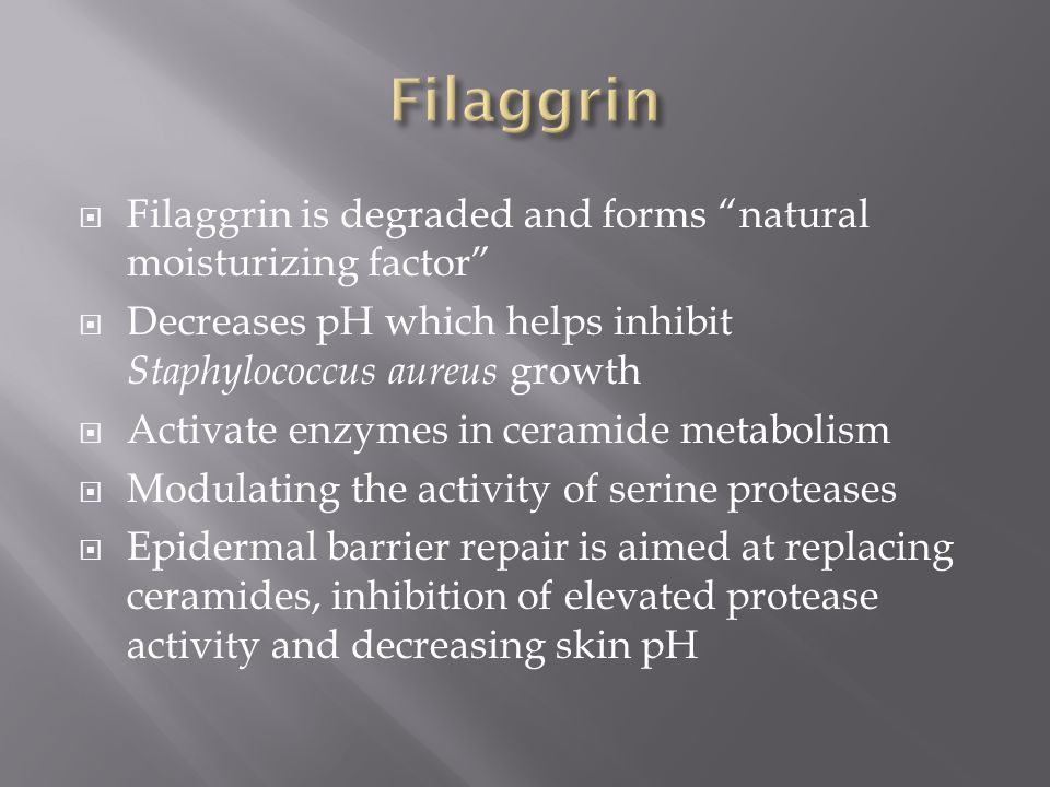 Filaggrin Filaggrin is degraded and forms natural moisturizing factor Decreases pH which helps inhibit Staphylococcus aureus growth.