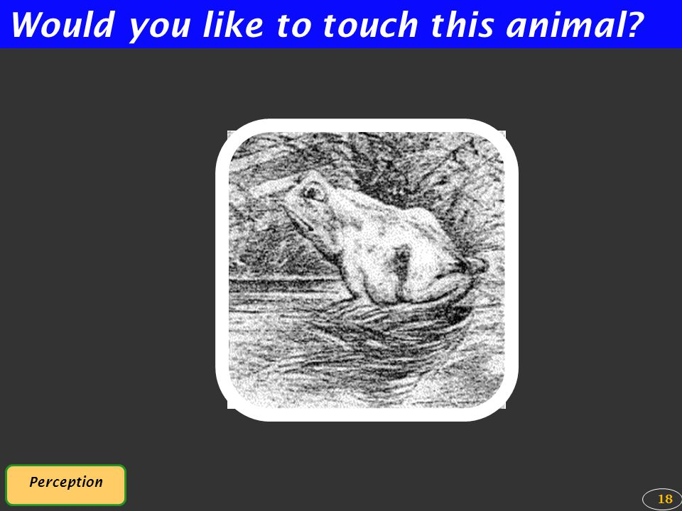 Would you like to touch this animal