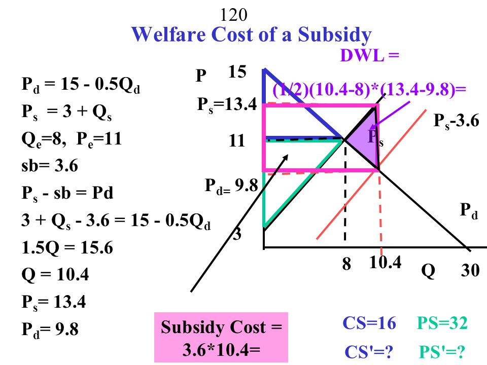 Welfare Cost of a Subsidy