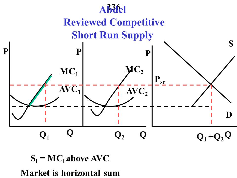 Abdel Reviewed Competitive Short Run Supply