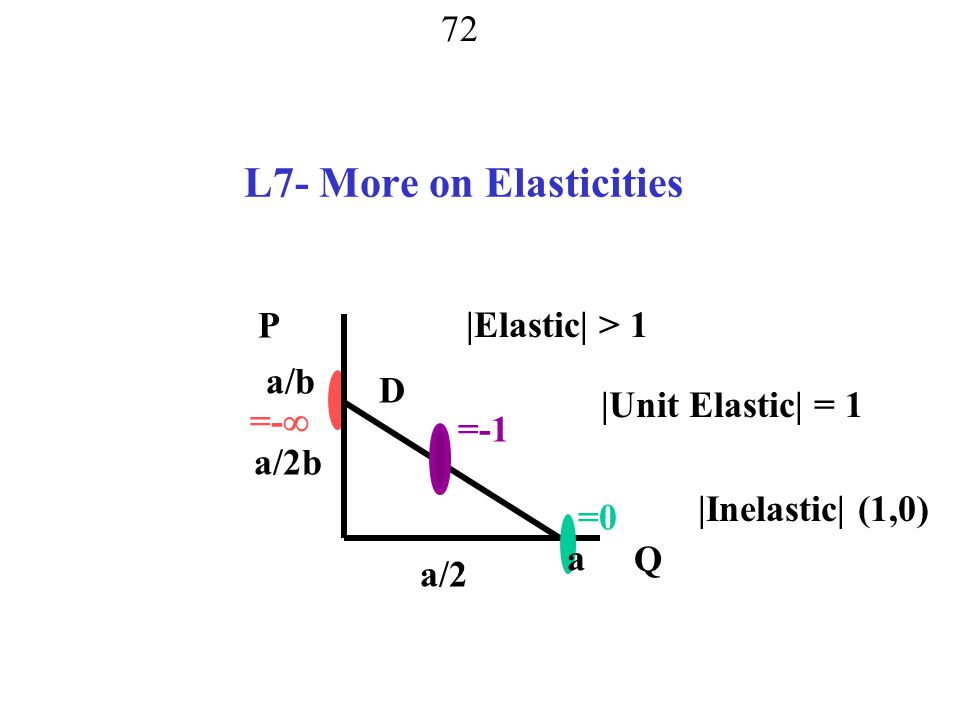 L7- More on Elasticities