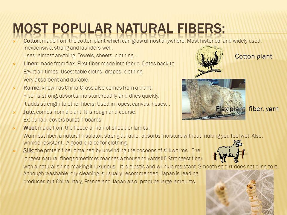 Most popular natural fibers: