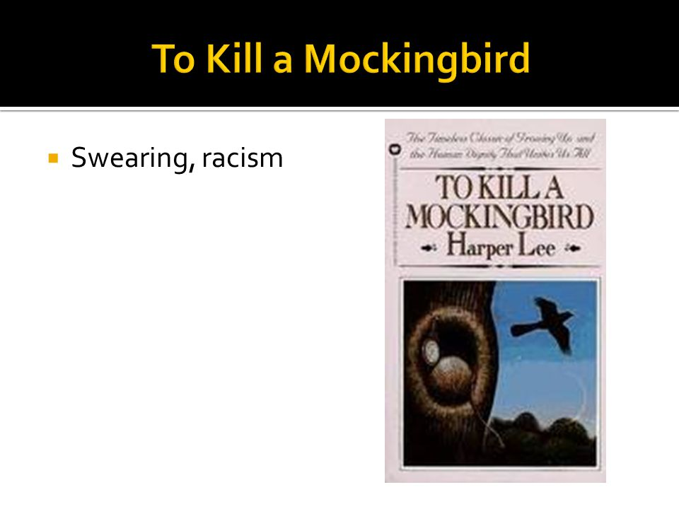 To Kill a Mockingbird Swearing, racism